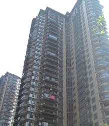 万科高尔夫8805楼